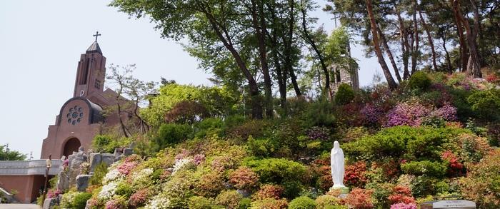 정문 성모동산 앞에서 바라본 새 성당과 옛 석조 성당.