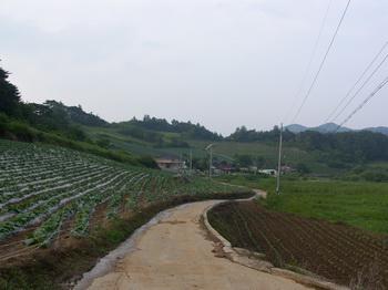 포산리 마을 입구에서 마을회관 쪽을 본 풍경. 마을회관 뒤쪽 산길로 30분 정도 들어가면 교우촌터가 나온다.