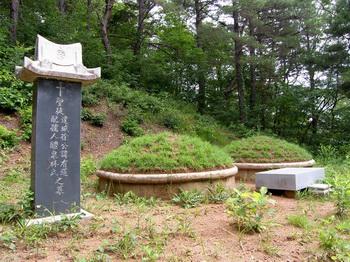 양범리 마을 북서쪽에 있는 서유도와 부인 예천 임씨 묘.