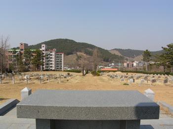 야외제대에서 본 진영 성당 공원묘지 전경.