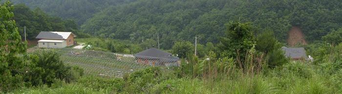 왕피리 교우촌터에서 내려다 본 갈전마을. 현재 이곳에는 왕피천 유역 생태경관 보전지역 감시원 집과 한 두 집 정도가 더 있다.