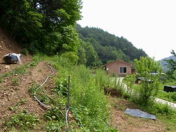 우련전 교우촌터 입구 민가 앞 산길을 따라 100m 정도 올라가면 김종한 안드레아가 살던 교우촌터가 나온다.