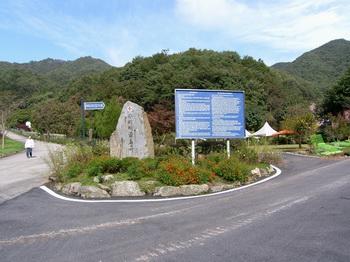 성지 입구. 왼쪽으로 가면 겟세마니 동산, 오른쪽으로 가면 미리내 성모성심수녀회 본원이 있고, 표지석 뒤로는 야외미사를 봉헌할 수 있는 광장이 있다.