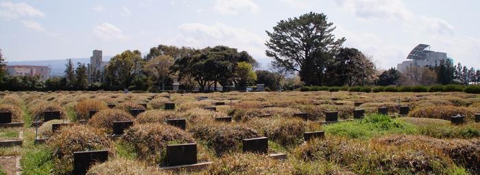 황사평에는 교우들의 묘 뒤에 신축교안 순교자들의 묘소가 자리하고 있다.